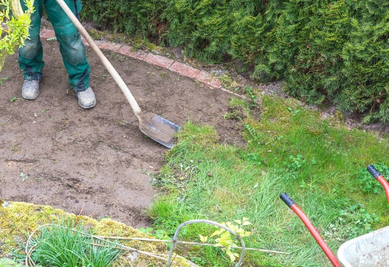 How To Kill Unwanted Grass In Flower Beds - Gardening Chores