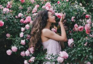18 Of The Most Fragrant Roses To Fill Your Garden With Sweet Scents All Season Long
